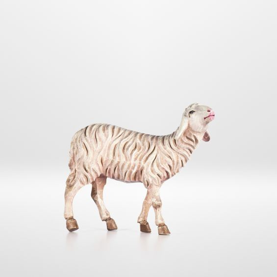 Schaf (stehend)