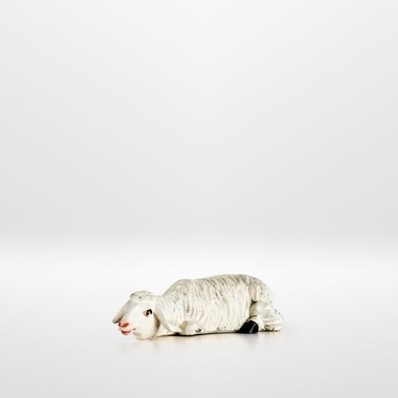 Sheep (lying)