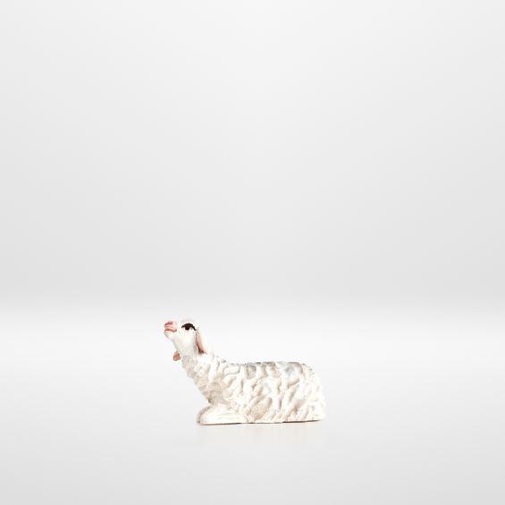 Lamb (sitting)