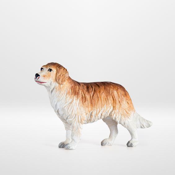 Hund (stehend)